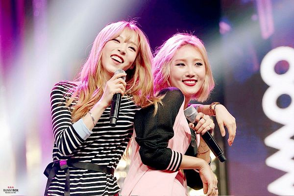 Tags: K-Pop, Mamamoo, Hwasa, Moonbyul
