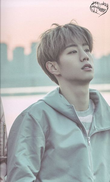 Tags: K-Pop, Got7, Mark, Striped Shirt, Blue Jacket, Hoodie, Blue Outerwear, Striped, Android/iPhone Wallpaper, Flight Log: Departure, Scan