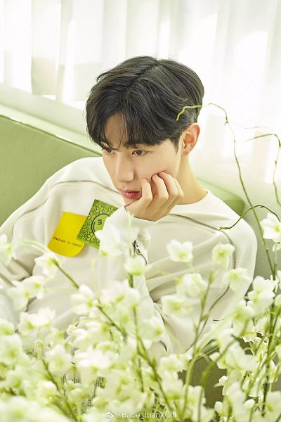 Tags: K-Pop, Got7, I Never Told You, Mark, From Above, Hand On Cheek, Arm Support, Hand On Head, Couch, Curtain, Flower, White Flower