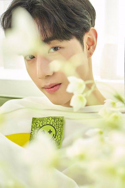 Tags: K-Pop, Got7, I Never Told You, Mark, Covering Face, Covering Eyes, Flower, White Flower