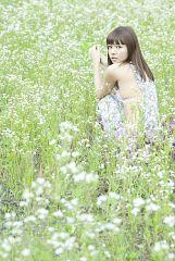 Mikiho Niwa