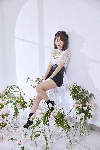 Tags: K-Pop, IZ*ONE, Miyawaki Sakura, Flower, Black Headwear, Stool, Red Lips, Sitting On Chair, Rose (flower), Medium Hair, Short Sleeves, Chair