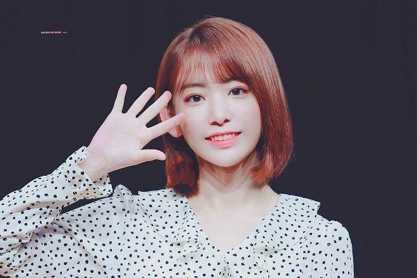 Tags: J-Pop, HKT48, IZ*ONE, Miyawaki Sakura, Gray Background, Spotted, Medium Hair, Spotted Shirt, Wave, Sakura No Hana