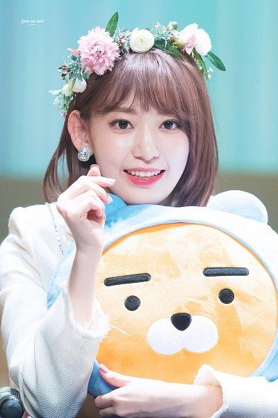 Tags: J-Pop, IZ*ONE, HKT48, Miyawaki Sakura, White Outerwear, White Flower, Pink Flower, Toy, Medium Hair, White Jacket, Heart Gesture, Stuffed Toy