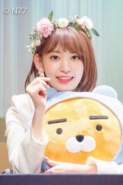 Tags: J-Pop, HKT48, IZ*ONE, Miyawaki Sakura, Gray Background, Flower, White Jacket, Pink Flower, Stuffed Toy, Medium Hair, Hair Ornament, Flower Crown