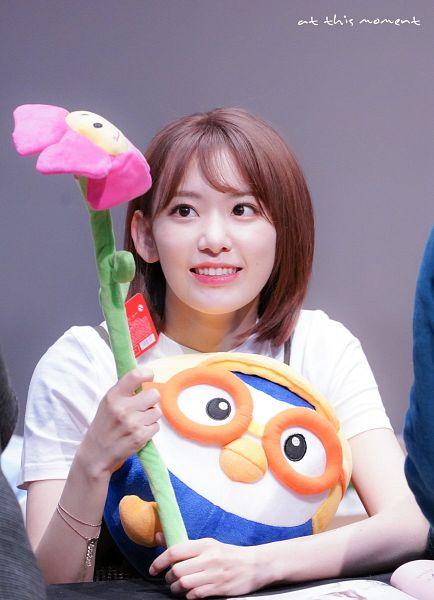 Tags: J-Pop, HKT48, IZ*ONE, Miyawaki Sakura, Stuffed Animal, Looking Away, Medium Hair, Looking Up, Bracelet, Stuffed Toy, Gray Background, At This Moment