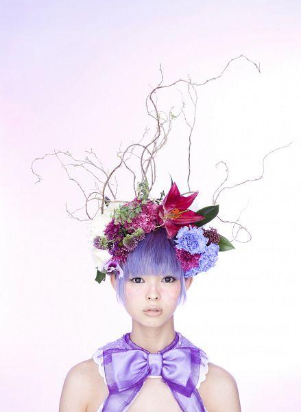 Tags: J-Pop, Dempagumi.inc, Mogami Moga, Blue Flower, Purple Flower, Black Eyes, Purple Hair, Flower, Flower Crown
