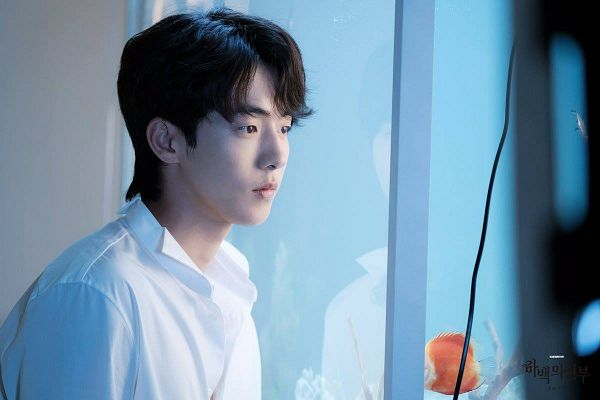 Tags: K-Drama, Nam Joo-hyuk, Fish Bowl, Water, Bride Of The Water God