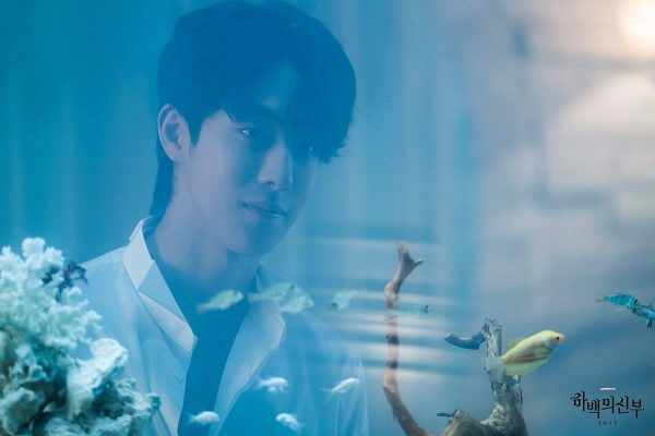 Tags: K-Drama, Nam Joo-hyuk, Fish Bowl, Water, Animal, Fish, Bride Of The Water God