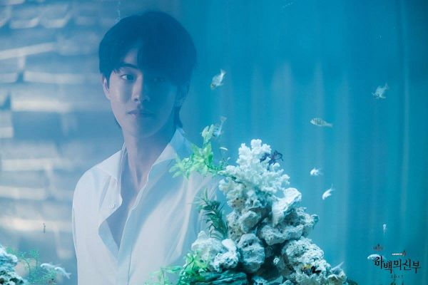 Tags: K-Drama, Nam Joo-hyuk, Fish, Fish Bowl, Water, Animal, Bride Of The Water God