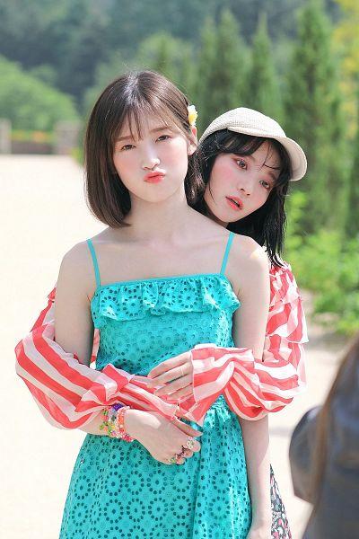 Tags: K-Pop, Oh My Girl, Oh My Girl Banhana, Binnie, Arin, Duo
