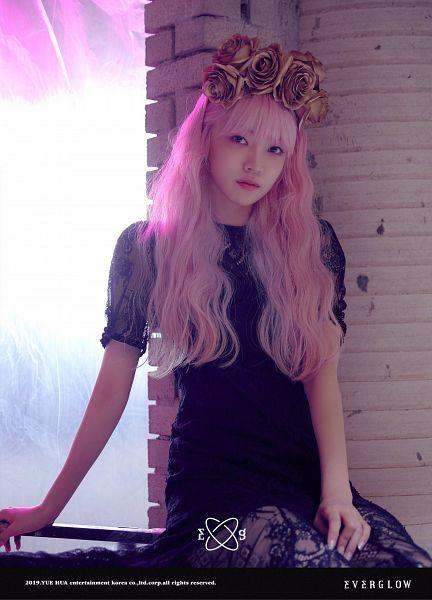 Tags: K-Pop, Everglow, Onda, Text: Artist Name, Pink Hair, Flower Crown, Black Dress, Brick Background, Rose (flower), Crown, Text: Company Name, Flower