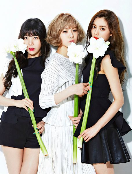 Tags: K-Pop, After School, Orange Caramel, Lizzy, Raina, Nana, Sleeveless, Make Up, Bare Shoulders, Light Background, Three Girls, Flower