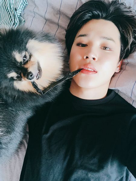 Tags: K-Pop, Bangtan Boys, Park Jimin, Bed, Laying On Back, Earrings, Sweater, On Bed, Dog, Close Up, Black Outerwear, Animal