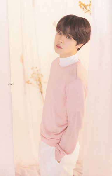 Tags: K-Pop, BTS, Park Jimin, Hand In Pocket, Bouquet, White Pants, Flower, From Above, Pink Outerwear, Sweater, Light Background, Curtain