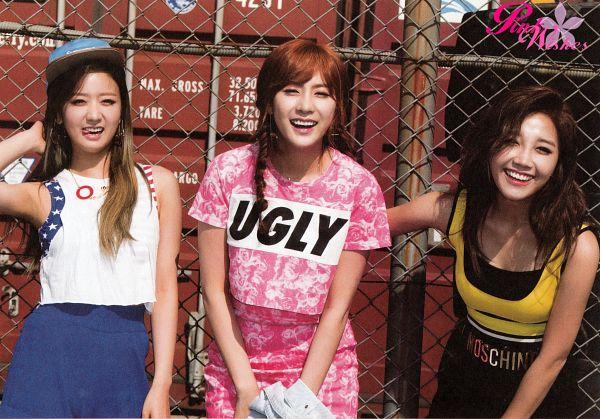 Tags: K-Pop, Apink, Jung Eun-ji, Oh Ha-young, Yoon Bo-mi, Three Girls, Trio, Fence, Wallpaper, Pink Memory