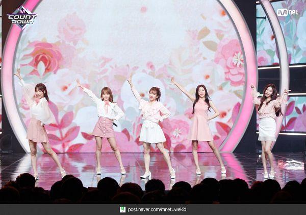 Tags: J-Pop, K-Pop, Television Show, Cherry Bullet, HKT48, IZ*ONE, Everglow, AKB48, Park Haeyoon, Kang Hyewon, Wang Yiren, Miyu Takeuchi