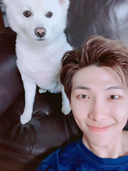 Tags: K-Pop, BTS, Rap Monster, Dog, Couch, Animal, Close Up, Twitter, Selca
