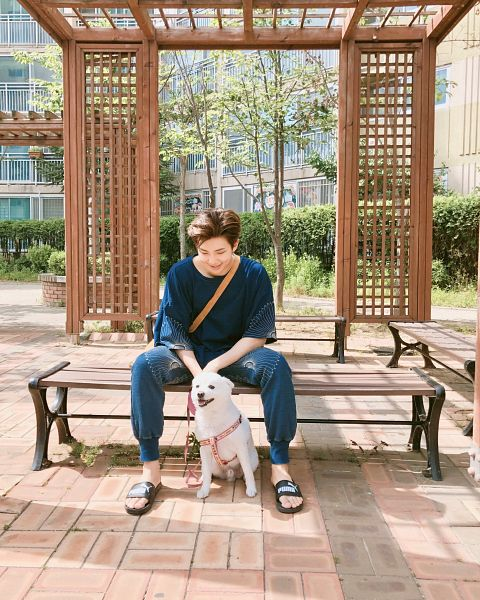 Tags: K-Pop, BTS, Rap Monster, Blue Shirt, Day, Animal, Spread Legs, Bag, Outdoors, Tree, Bench, Blue Pants