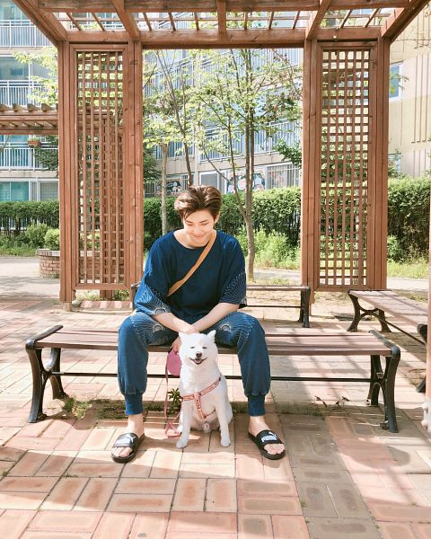 Tags: K-Pop, BTS, Rap Monster, Looking Down, Sandals, Dog, Sitting On Bench, Blue Shirt, Day, Animal, Spread Legs, Bag