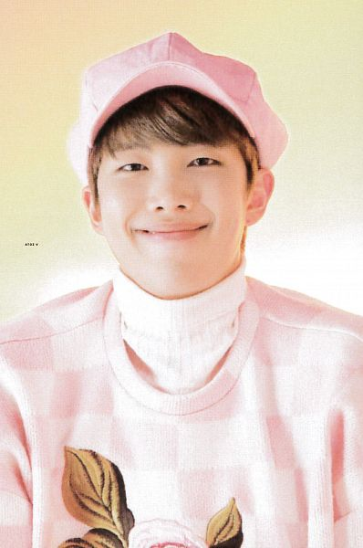 Tags: K-Pop, BTS, Rap Monster, Pink Headwear, Light Background, Floral Print, Collar (Clothes), Hat, Turtleneck, Checkered, Checkered Print, Sweater