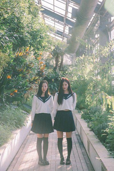 Tags: K-Pop, Real Girls Project, Lee Jeewon, Cha Jiseul, Tree, Uniform, Two Girls, Black Eyes, Sailor Collar, Skirt, Duo, Plant