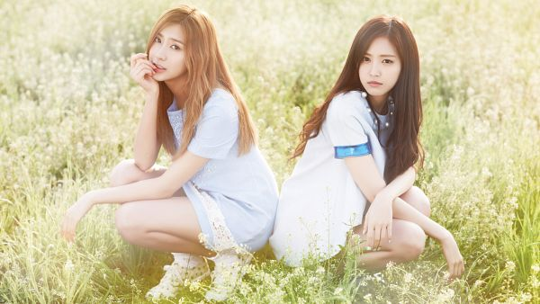 Tags: K-Pop, Apink, Son Na-eun, Oh Ha-young, HD Wallpaper, Wallpaper, Secret Garden (Apink)