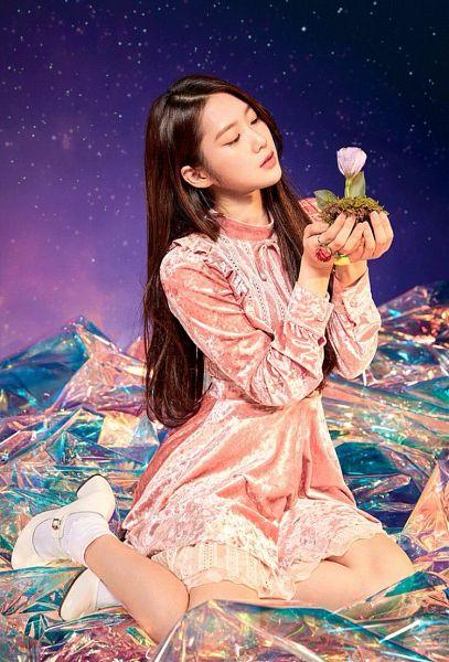 Secret Garden (Oh My Girl) - Oh My Girl