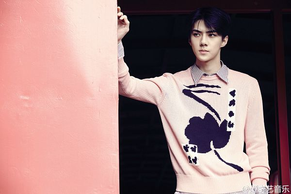 Tags: EXO, Sehun, Pink Background, Wallpaper