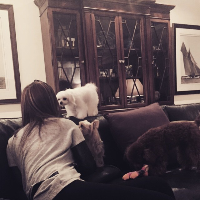 Tags: K-Pop, Girls' Generation, Prince Fluffy, Stephanie Young Hwang, Bori (Dog), Cherry (Dog), Sooyoung, Sitting, Sitting On Couch, Gray Shirt, Bent Knees, Couch