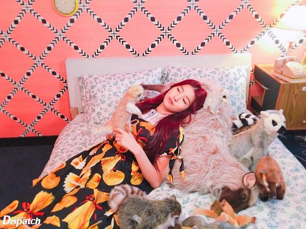 Tags: K-Pop, G-friend, Sowon, Pink Background, Red Hair, On Bed, Bed, Stuffed Toy, Stuffed Animal, Short Sleeves, Closed Mouth, Wavy Hair
