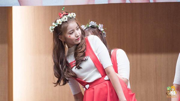 Tags: K-Pop, G-friend, Sowon, Flower Crown, Hair Ornament, Crown, Flower, Fansigning Event, HD Wallpaper, Wallpaper