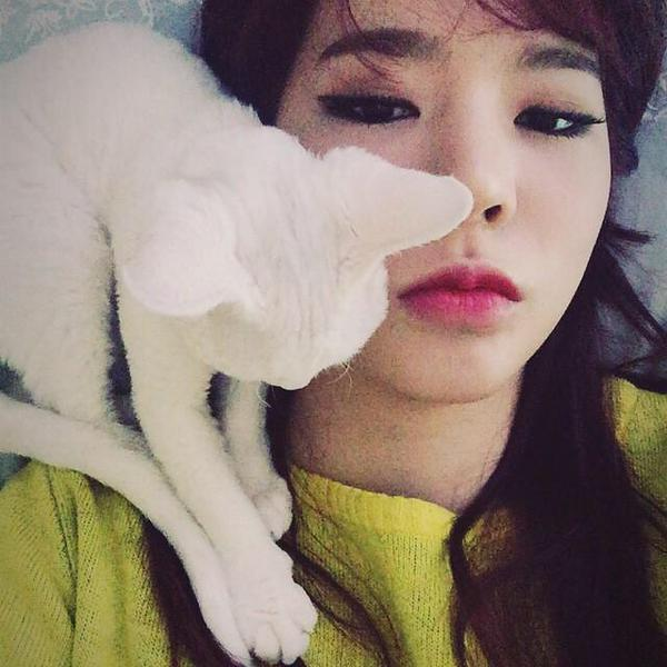Tags: K-Pop, Girls' Generation, Salt, Sunny, Looking At Another, Cat, Frown, Yellow Shirt, Instagram