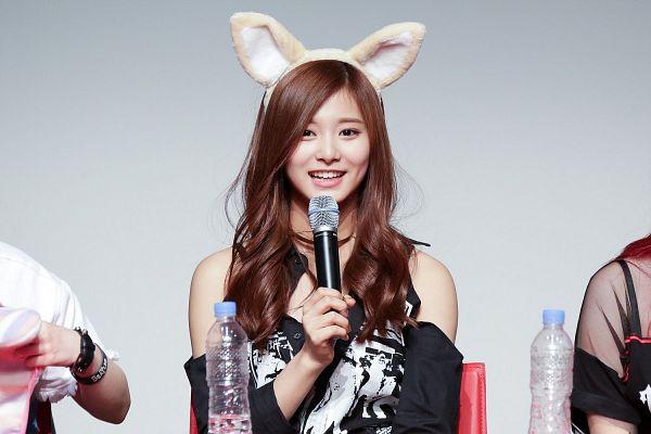 Tags: K-Pop, Twice, Tzuyu, Gray Background, Detached Sleeves, Animal Ears, Wallpaper