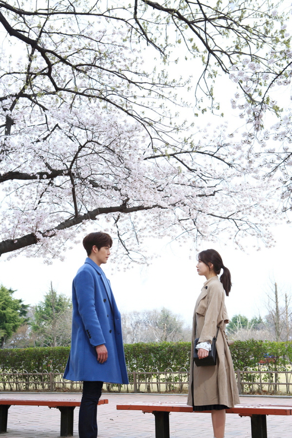 Tags: K-Pop, K-Drama, Miss A, Kim Woo-bin, Bae Suzy, Bag, Pink Flower, Brown Outerwear, Cherry Blossom, Looking At Another, Coat, Plant