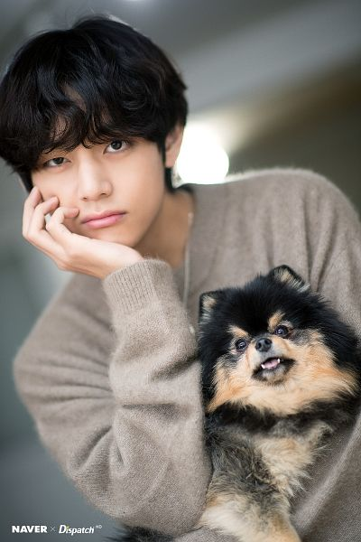 Tags: K-Pop, BTS, V (Kim Taehyung), Yeontan, Black Eyes, Hand On Cheek, Sweater, Wavy Hair, Arm Support, Necklace, Dog, Close Up