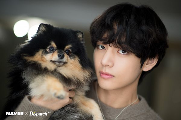 Tags: K-Pop, BTS, V (Kim Taehyung), Yeontan, Facial Mark, Dog, Close Up, Animal, English Text, Sweater, Black Eyes, Wavy Hair
