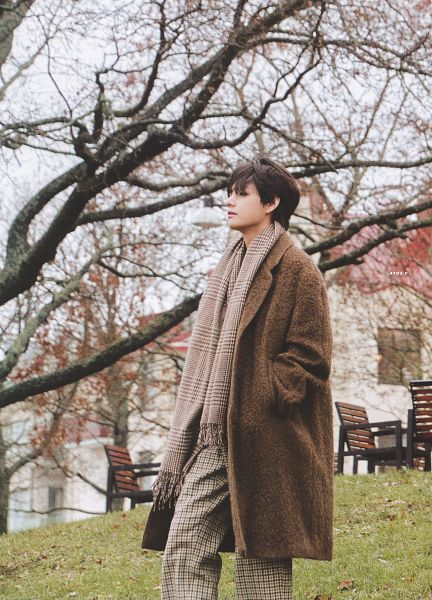Tags: K-Pop, BTS, V (Kim Taehyung), Brown Pants, Brown Outerwear, Plant, Brown Neckwear, Serious, Outdoors, Hand In Pocket, Scarf, Wind