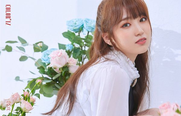 Tags: K-Pop, J-Pop, IZ*ONE, HKT48, Yabuki Nako, Rose (flower), Contact Lenses, Pink Flower, Serious, Flower, Blue Flower