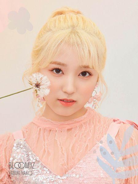 Tags: K-Pop, J-Pop, HKT48, IZ*ONE, Yabuki Nako, Text: Artist Name, Text: Album Name, Flower, Pink Shirt