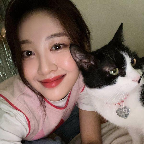 Tags: K-Pop, LOOΠΔ, Yves, Cat, Animal