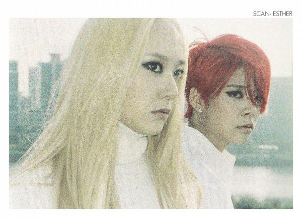 Tags: K-Pop, f(x), Amber Liu, Krystal Jung, Wallpaper
